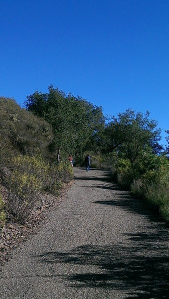 Complete a lot of vertical on Bald Mountain Trail's paved steeps