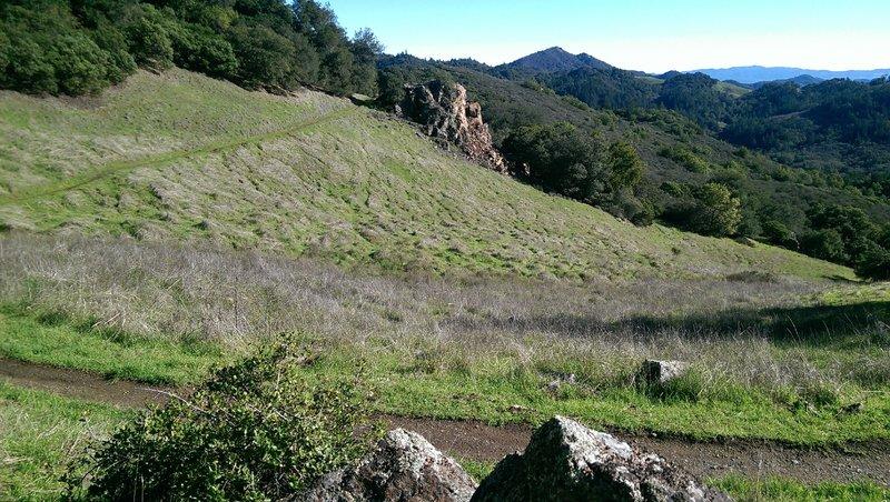 Open meadows of the Vista Trail provide the vistas