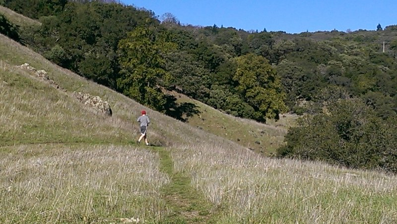 Trail contours around the hillside here for good running