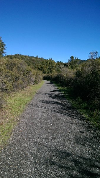 Crushed gravel surface on the wide Meadow Trail makes for easy going