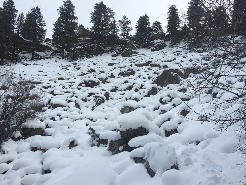 A talus field turned Mushroom Kingdom after snow.