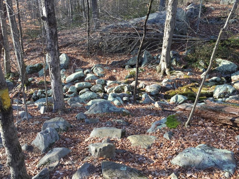 Classic East Coast Rocks - watch your feet!