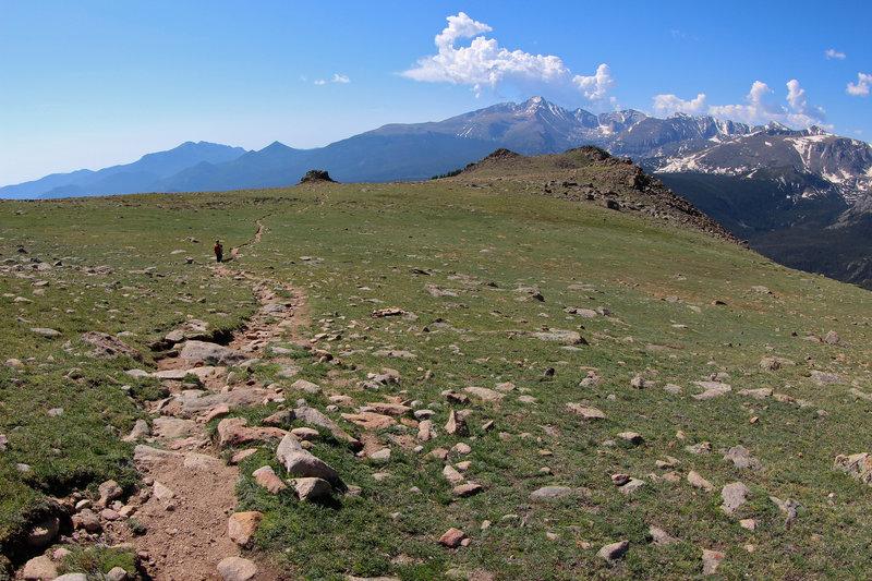 Ute Trail on Trail Ridge, Rocky Mountain NP CO