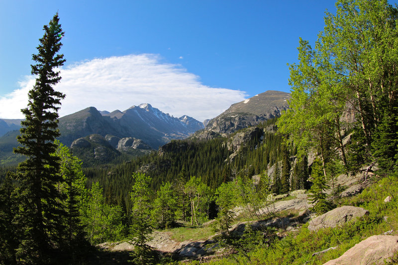 Long's Peak and aspens