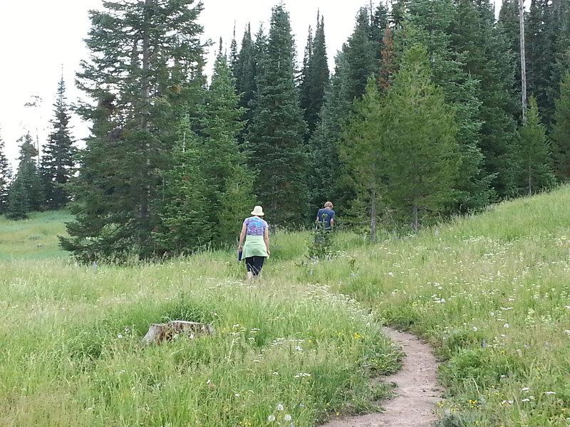 Hiking Mt. Werner.