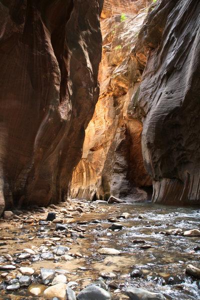 Zion Canyon - The Narrows