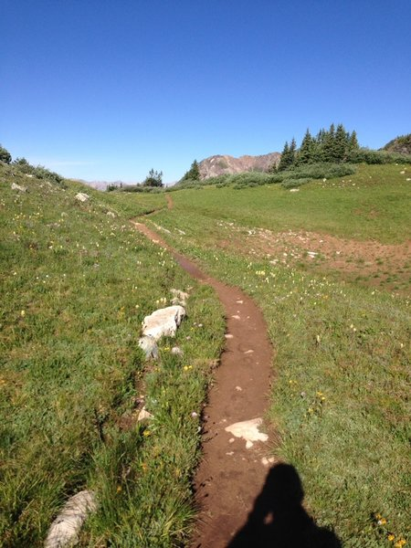 Pristine trail between steep sections on Trail Rider descent