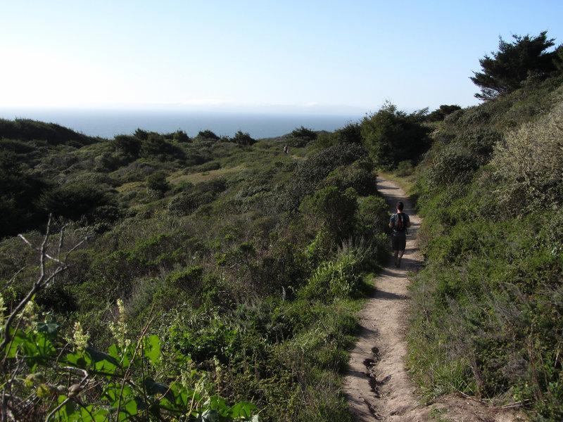 California coastal trails are delightful