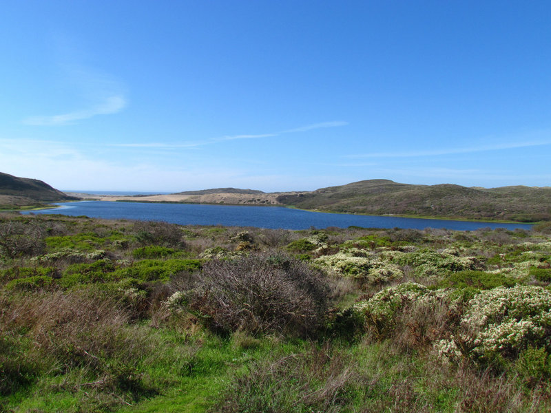 Abbotts Lagoon, Point Reyes National Seashore, CA