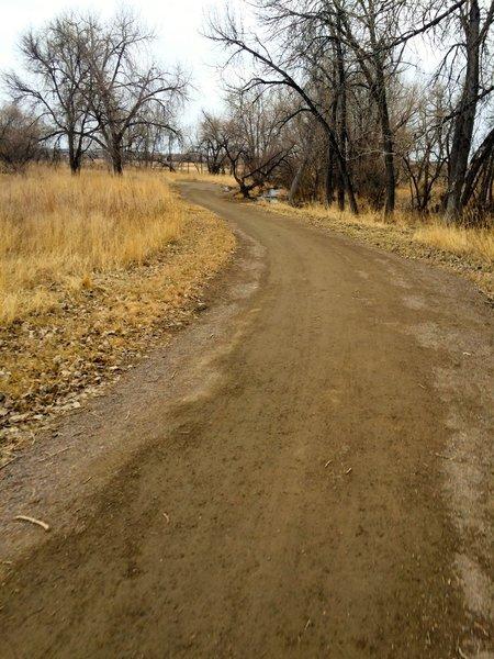 The Coal Creek trail, following the Coal Creek, of course.