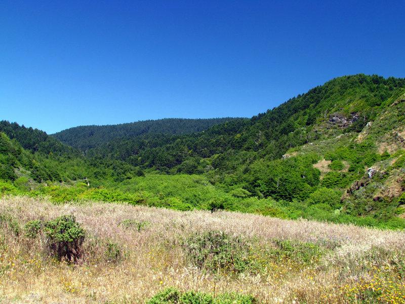 Bear Valley, Point Reyes