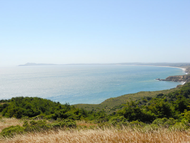 Drakes Bay in the distance- from the Coast Trail - North