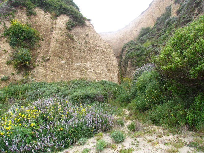 Great cliff sides