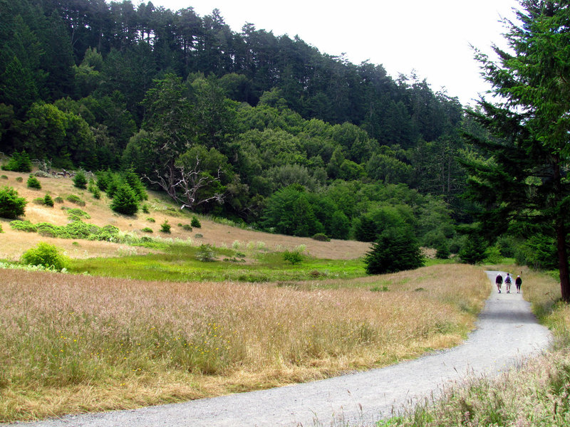 Bear Valley Trail, Point Reyes