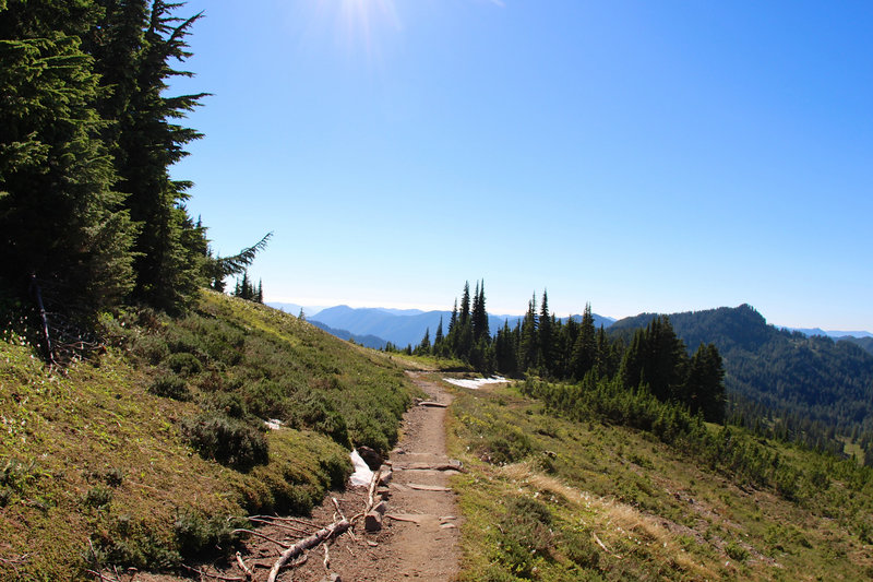 High Divide Trail, almost to the divide.