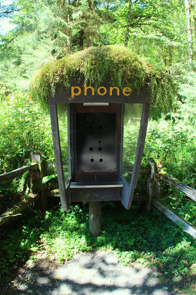 Hoh Obsolete Phone Home