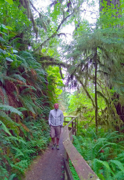 Walking through the rain forest - so beautiful.