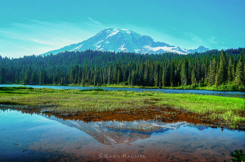 You can't get a bad shot from Reflection Lake, as long as it's sunny...