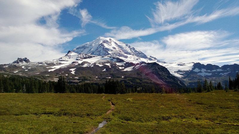The eponymous Mt. Rainier.