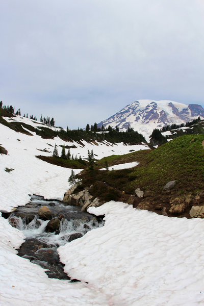 Mount Rainier and flowing water