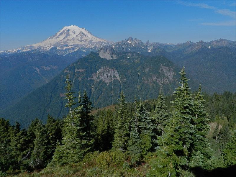 Mt Rainier, from the Shriner Peak lookout