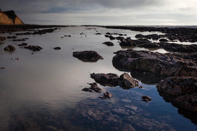Duxbury Reef, California