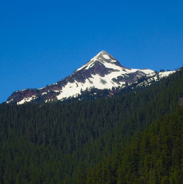Mt Rainier from Kautz Creek