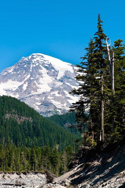 Mount Rainier from Wonderland Trail.