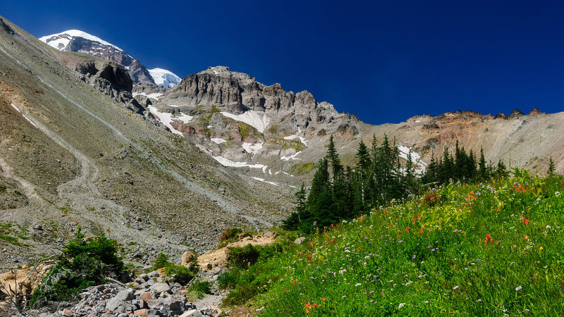 Glacier Basin, Mount Rainier