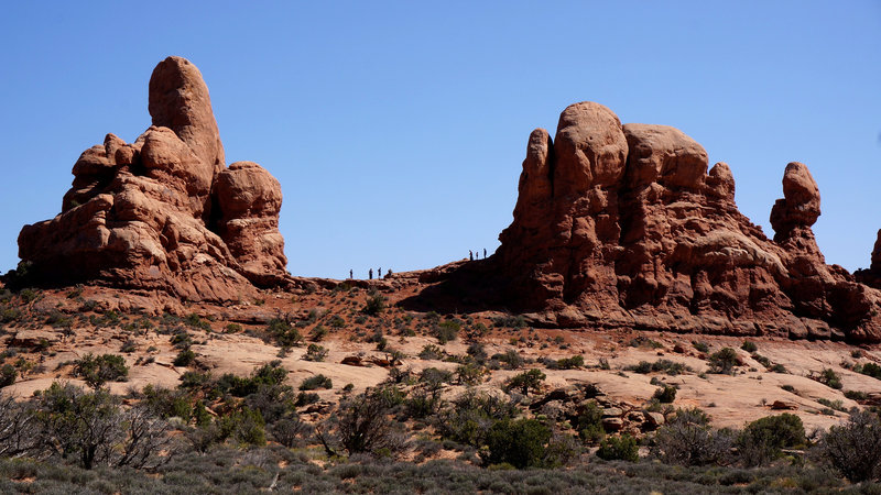 Wonderful rock formations in Arches National Park