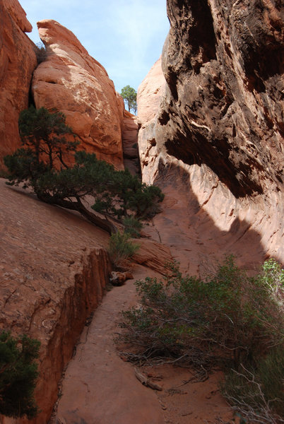The small canyon behind the Navajo Arch