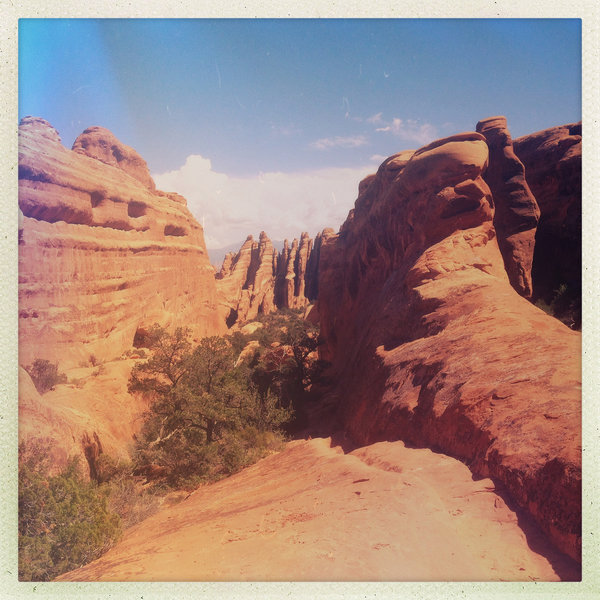 Looking into a fin canyon on Devils Garden Primitive Loop Trail