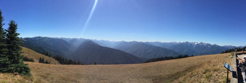 Hurricane Ridge from the Cirque Rim Trail