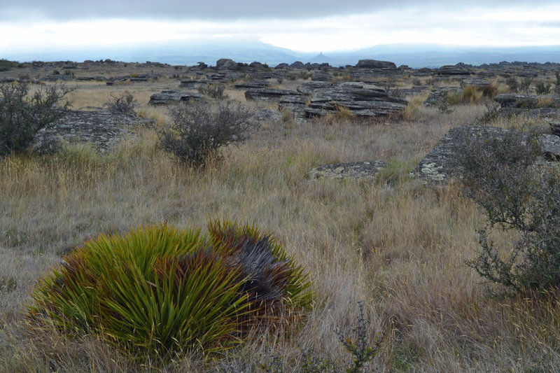 Rocky tors surrounding Sutton Salt Lake