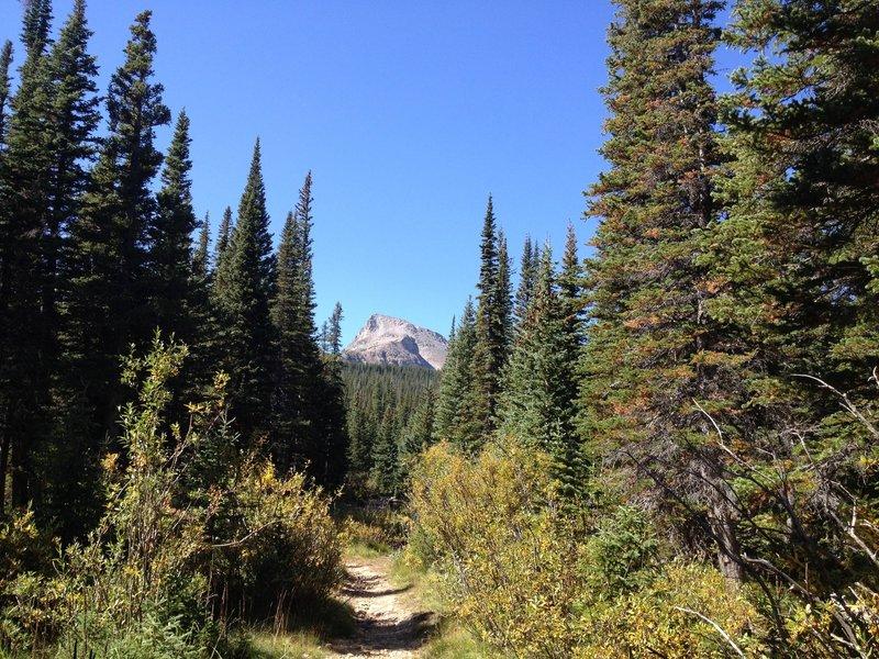 Sawtooth mountain watching over you on Buchanan Pass Trail.