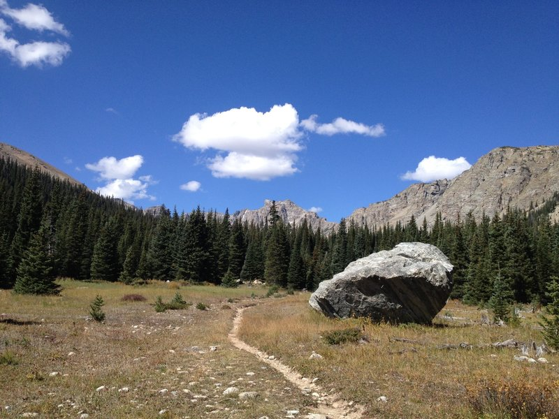 Near the intersection with the St. Vrain Glacier trail.