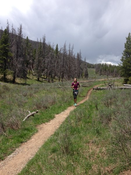 Running that smooth smooth singletrack, such a fun trail to run :)