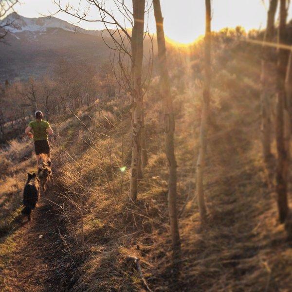 Always a good sunset run on Angler Mountain Trail!
