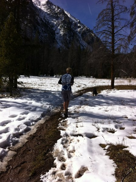 Running towards Buffalo Mountain on Mesa Cortina trail.