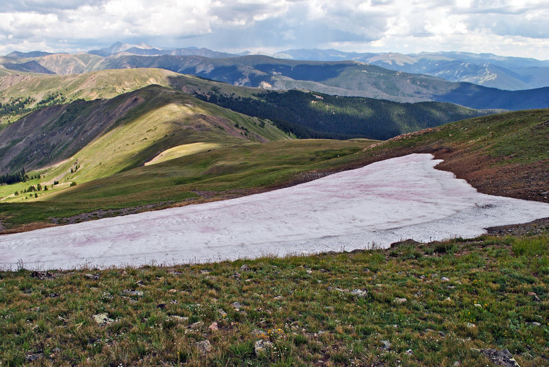 Looking east over a snowfield in August - Ptarmigan Mountain Trail
