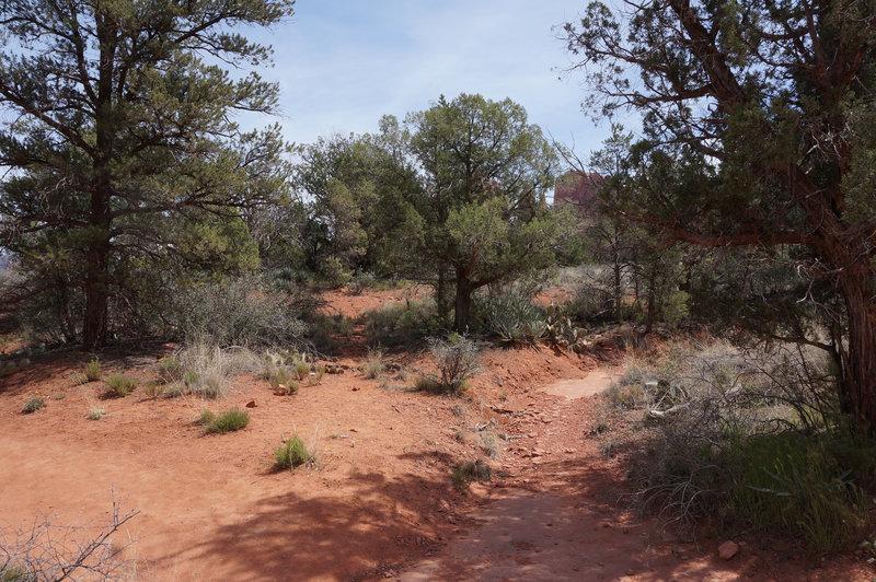 High desert scenery on the Templeton Trail
