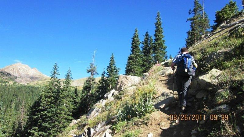 Awesome trail around tree line.