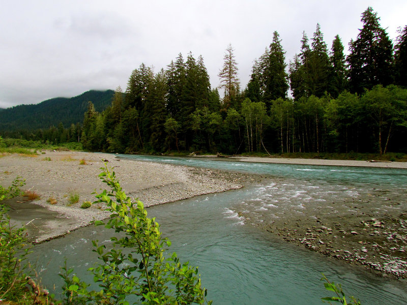 Olympic National Park, Hoh River
