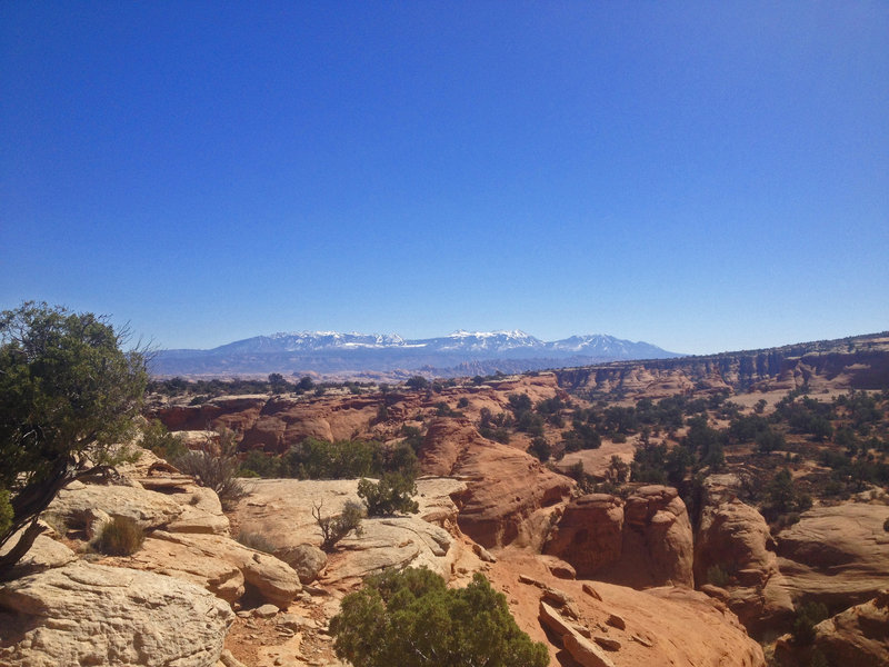 Looking south towards the La Sal Mountains from the Bull Run Trail