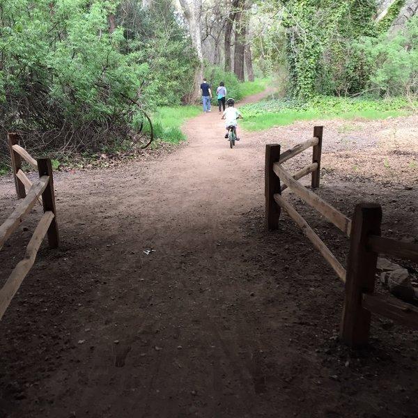 North park path, Lower Bidwell Park