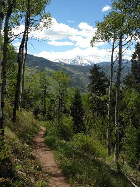 Great views on a nice descent through the aspens.