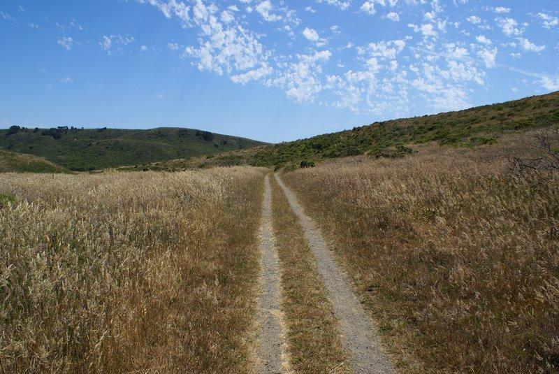 Point Reyes - Estero Trail