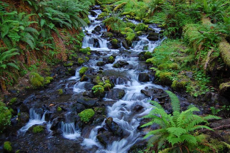 Rushing side stream