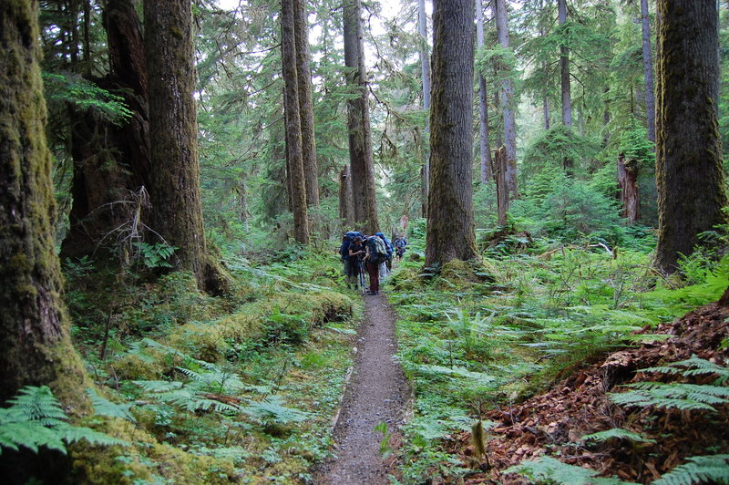 Backpackers along the trail