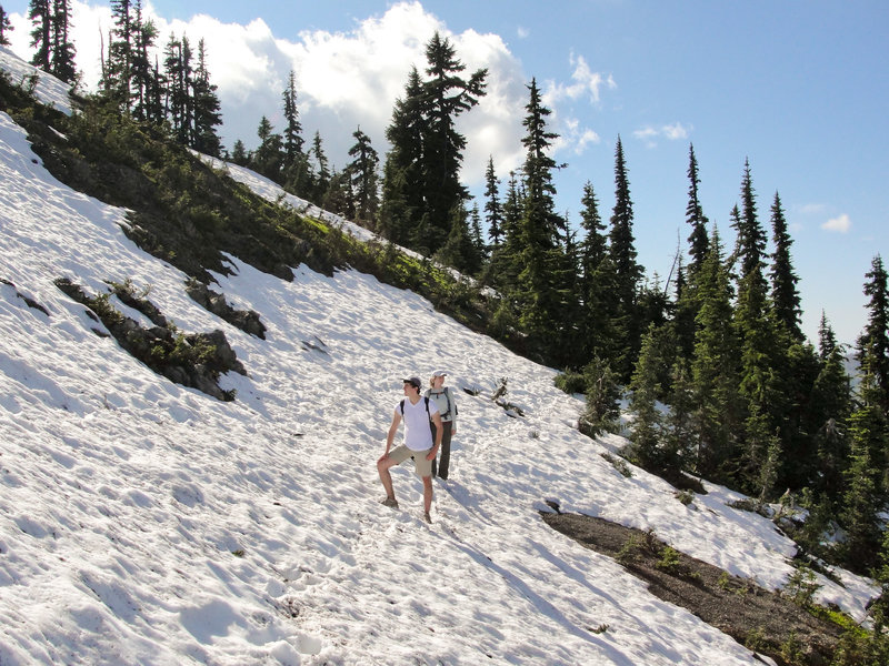 On a snowfield in Olympic National Park